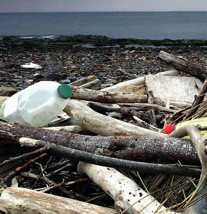 Beach littered with household waste